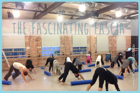 Fascia Workshops conducted by Trevor Aung Than