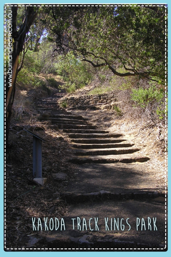 Kakoda Track, Kings Park, Western Australia (Thanks to  afrique_unite @ Flickr for this image)